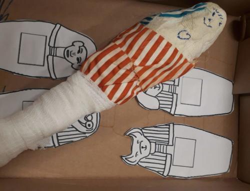 Mumien und ihre Sarkophage